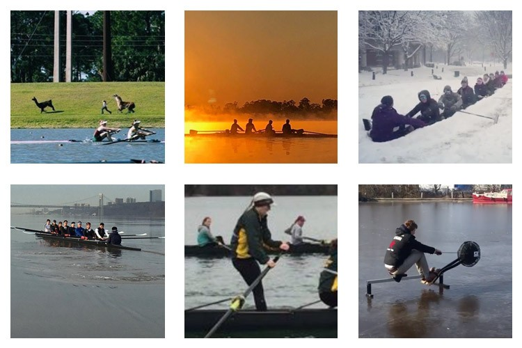 row2k features: This Week's Best of Rowing on Instagram 3/16/2018