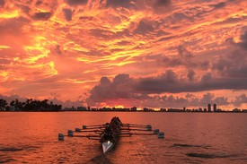 row2k features: 'row2k Photo of the Day' of 2017